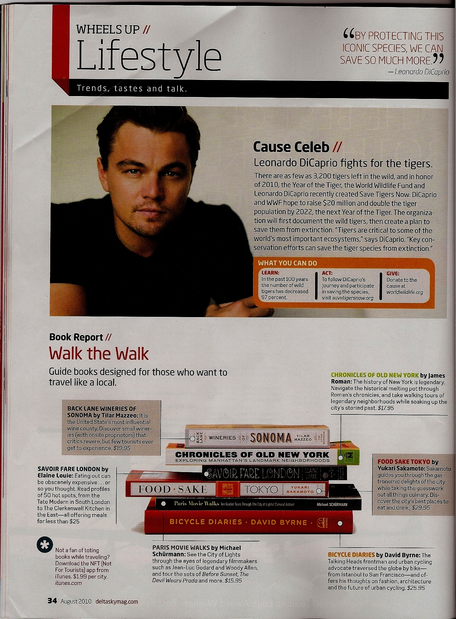 """delta sky magazine book recommendations"""