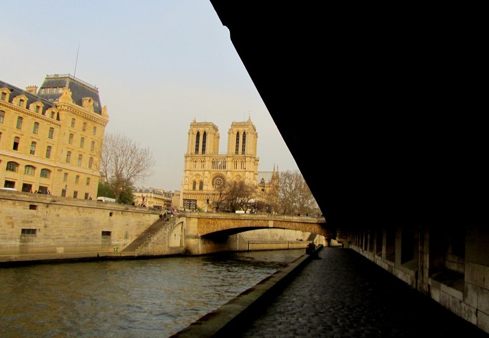 """Cathedral of Notre Dame in Paris seen from the Seine"""